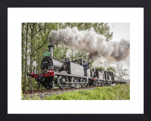 Terrier steam train